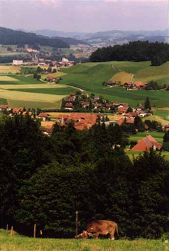 Hasle (Schafhausen)