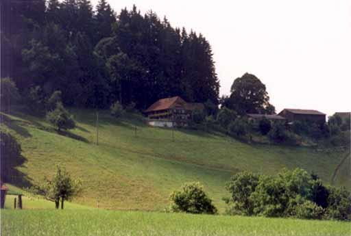 Hasle (Schwand)