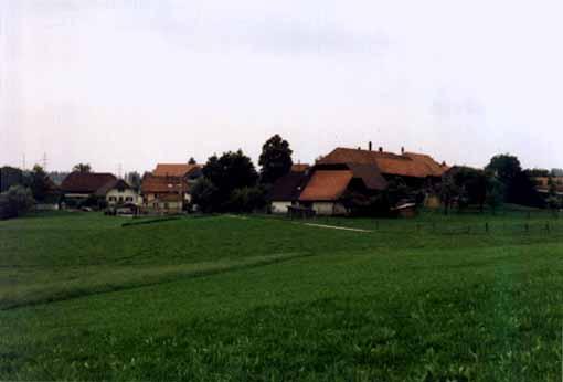 Grafenried farms